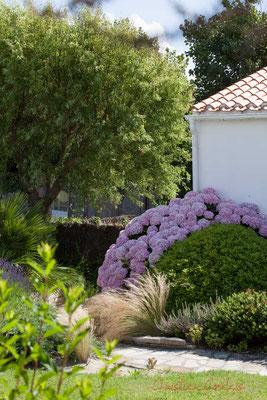 Habitat touristique de qualité en bordure du Jaunay, Saint-Gilles-Croix-de-Vie, Vendée, Pays de la Loire