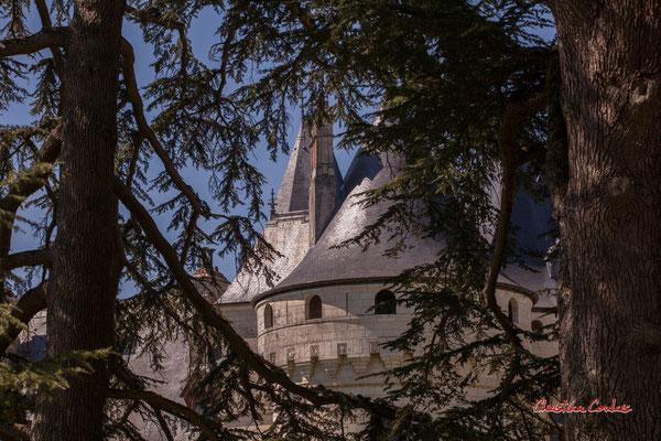 Château de Chaumont-sur-Loire, Loir-et-Cher, Région Centre-Val-de-Loire. Lundi 13 juillet 2020. Photographie © Christian Coulais
