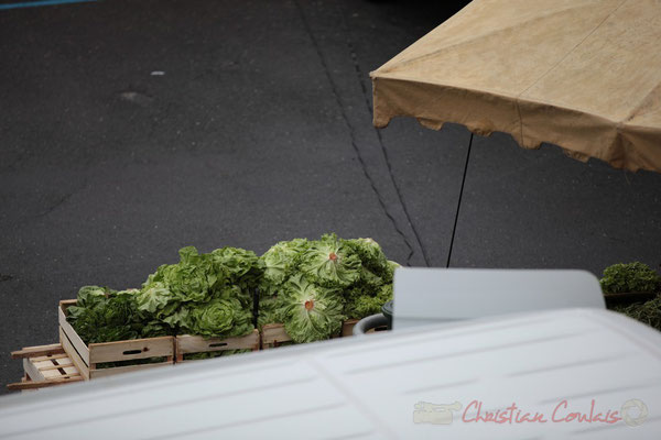 Salades de producteur du Lot-et-Garonne, Marché de Créon, Gironde