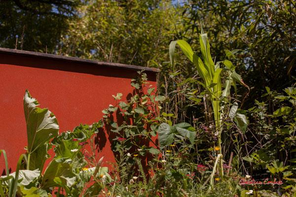Jardiniers de l'invisible. C. BRONDINO, I. BORLOZ, C. DUGUIT, M. ETORRE, T. RACAULT, S. ERRES-HAMAMA, R. de BUTTET, C. ALLOUIS, M. PLET, J. THUBERT, C. NEAU, étudiants ENSP VERSAILLES. Chaumont-sur-Loire, lundi 13/07/2020. Photographie © Christian Coulais