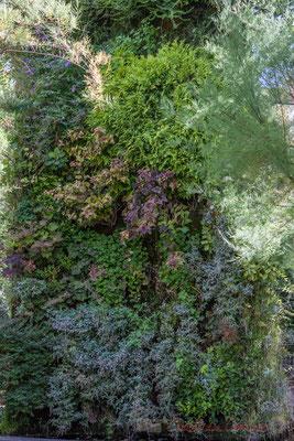 Mur végétal, potager du Domaine de Chaumont-sur-Loire