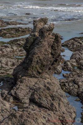 Pointe de Ryé, Corniche Vendéenne, Vendée, Pays de Loire