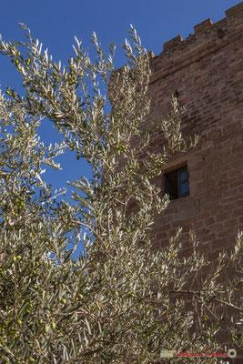 Olivier et tour carrée du Palais Château du Prince de Viana / Olivo y torre cuadrada del Palacio Castillo del Príncipe de Viana, Sangüesa, Navarra