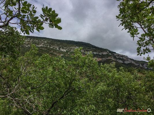 Sierra de Leyre depuis la NA-2200, à Castillo-Nuevo, Navarra
