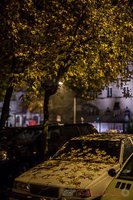"""""""Les feuilles mortes se ramassent à la pelle"""", Jacques Prévert. Novembre 2016. Rue de Tauzia, Bordeaux"""