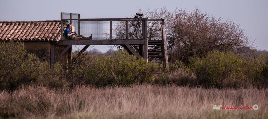 """""""Zone fumeur"""" Réserve ornithologique du Teich. Samedi 16 mars 2019. Photographie © Christian Coulais"""
