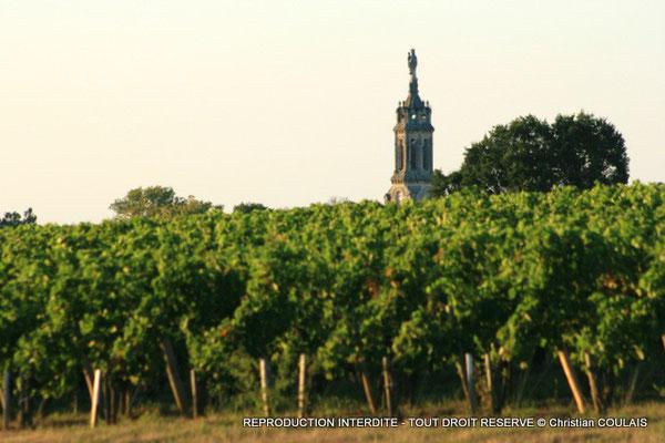 Vignoble des Côtes de Bourg, église Notre-Dame-de-Bayon, Bayon-sur-Gironde