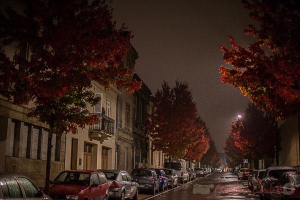 Rue des douves, Bordeaux