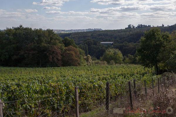 Saint-Genès-de-Lombaud, Chemin de Pougnan, on aperçoit les bâtiments de stockage du marc de raisin, en povenence de 4 départements...