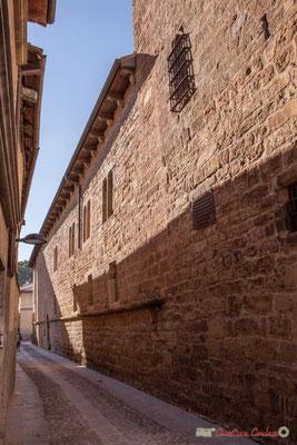 Une partie du Palais Château du Prince de Viana, est aujourd'hui une bibliothèque / Parte del Palacio del Castillo del Príncipe de Viana, hoy es una biblioteca, Sangüesa, Navarra