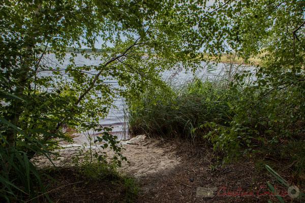 Avec une multitude d'ouvertures vers l'étang de Cousseau...