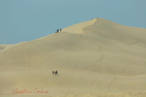 Dune du Pilat, Espace Naturel Sensible, La Teste-de-Buch