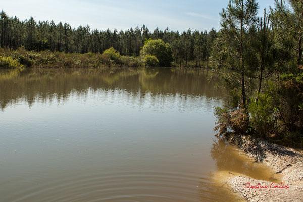 2/3 La grande gravière. Forêt de Migelan, espace naturel sensible, Martillac / Saucats / la Brède. Vendredi 22 mai 2020. Photographie : Christian Coulais