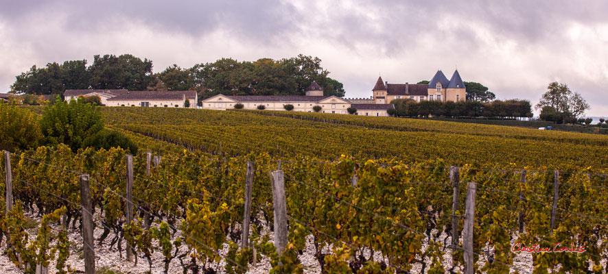Château d'Yquem et son vignoble, Sauternes. Samedi 10 octobre 2020. Photographie © Christian Coulais