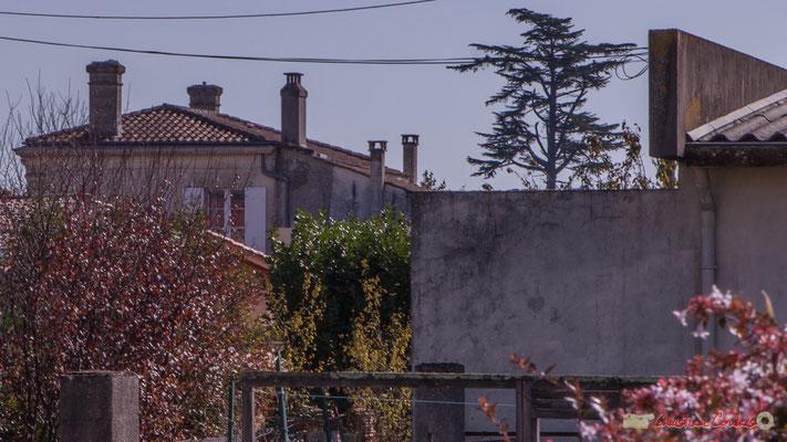 Au fond ancien domaine Raffy. Avenue de la République, Cénac, Gironde. 16/10/2017