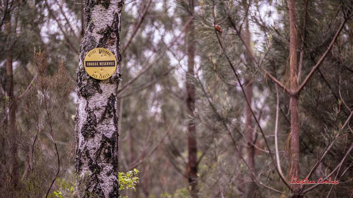 """""""Chasse réservée, est-ce du boulot ?"""" Forêt de Migelan, espace naturel sensible, Martillac / Saucats / la Brède. Samedi 23 mai 2020. Photographie : Christian Coulais"""