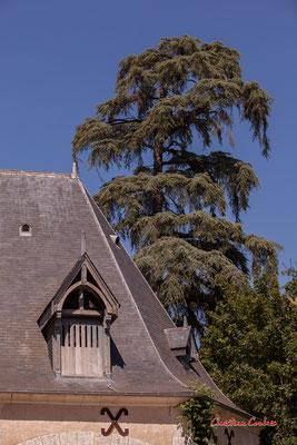 Grange aux abeilles, domaine de Chaumont-sur-Loire, Loir-et-Cher, Région Centre-Val-de-Loire. Lundi 13 juillet 2020. Photographie © Christian Coulais