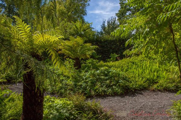 Les chasseurs de plantes de jardin; Claire Laeremans, paysagiste; Ellen Steenwegen, Katherine Engelen, architectes-paysagistes; Belgique
