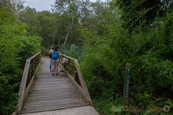 """Départ du sentier vert dit """"de la lagune de Contaut"""""""