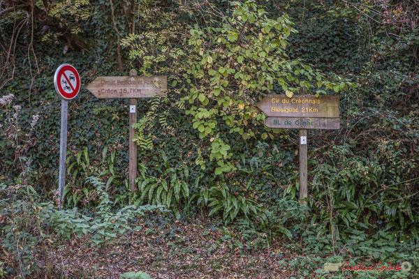 Départ du chemin de Brice, étang des sources de Latresne-bourg de Cénac. Chemin de Brice, Cénac, Gironde. 16/10/2017