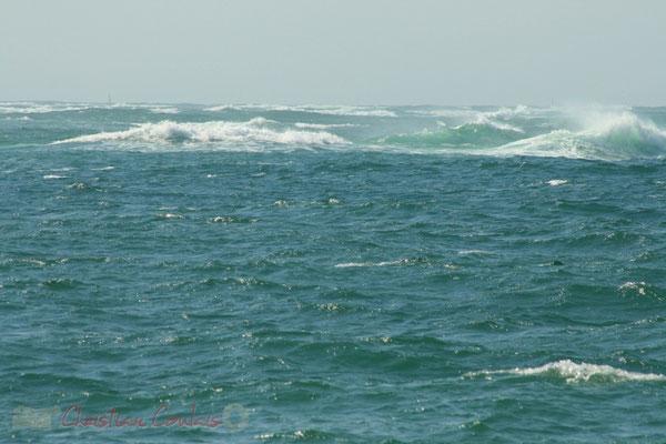 Océan atlantique. Petit-Nice de Pyla-sur-Mer, route de Biscarrosse, forêt domaniale de La Teste-de-Buch