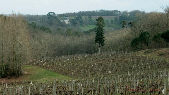 Châteaux, bois, vignobles se succèdent sur les côtes de Bordeaux. Carignan-de-Bordeaux