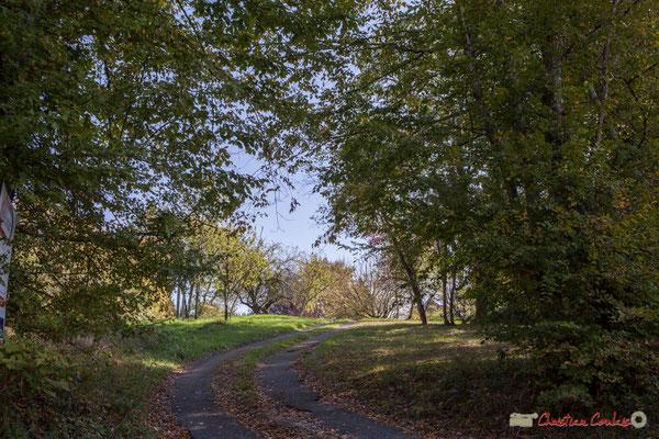 Vers Latresne, entrée de propriété à droite (ah pas de chevreuils aujourd'hui !). Allée Lamothe, Cénac, Gironde. 16/10/1017