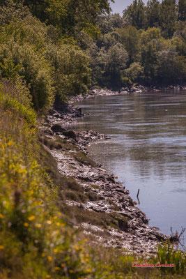"""""""Derrière la rive se cache une passerelle de randonnnée"""" La Garonne à Langoiran. Samedi 24 avril 2021. Photographie © Christian Coulais"""