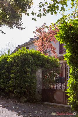 1 Habitat vernaculaire. Avenue de Moutille, Cénac, Gironde. 16/11/2017