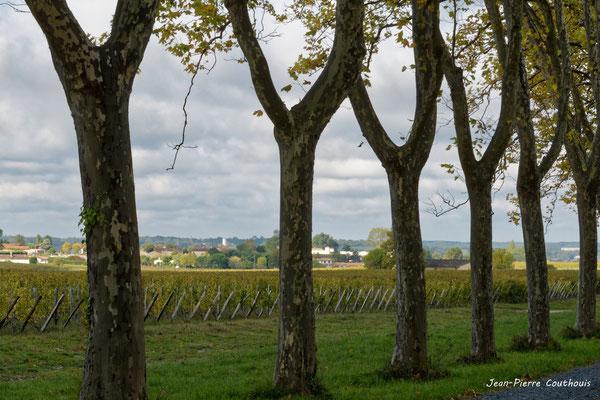 Entrée du Château Guiraud, Sauternes. Samedi 10 octobre 2020. Photographie © Jean-Pierre Couthouis