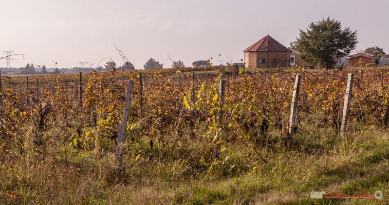 Construction contemporaine sur une ancienne parcelle de vigne en 3ème rangs. Chemin de Peybotte, Lignan-de-Bordeaux. 17/10/2017