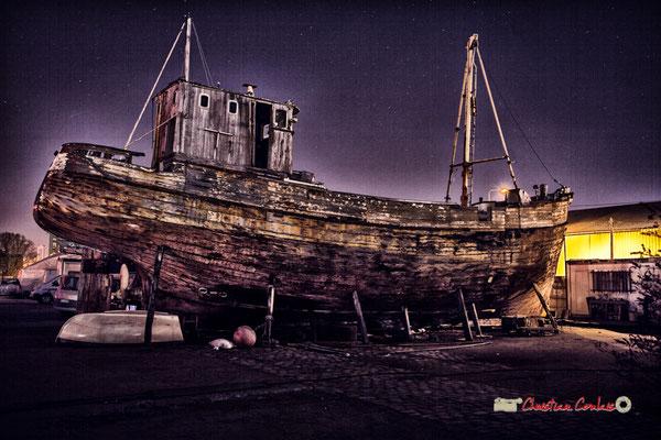 """""""Arche à Noé"""" Réfection de bateaux. Batellerie au bassin à flot. Bordeaux, Gironde. Mercredi 27 février 2019"""