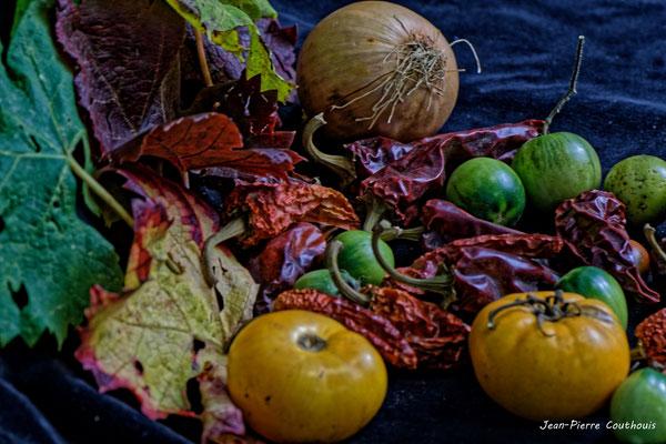 Nature morte végétale, Atelier Photo Numérique de l'AMAC. 09/11/2019 Photographie © Jean-Pierre Couthouis