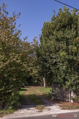 Parc du Clos Montagne, avenue du bois de filles, Cénac, Gironde. 16/10/2017