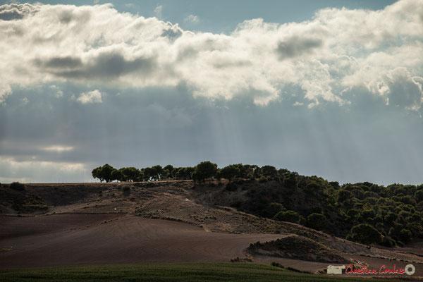 Non loin du barrage El Ferial / No muy lejos del embalse El Ferial, Parque natural de las Bardenas Reales, Navarra