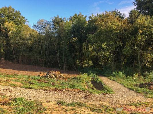 7 Le clos du Petit Maître, avenue du bois du moulin, Cénac, Gironde. 16/10/2017