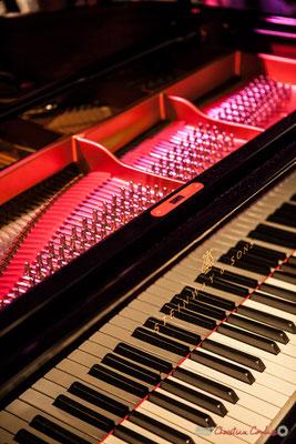 Piano utilisé par Rémi Panossian. Rémi Panossian RP3 au Festival JAZZ360 à Cénac, 9 juin 2017