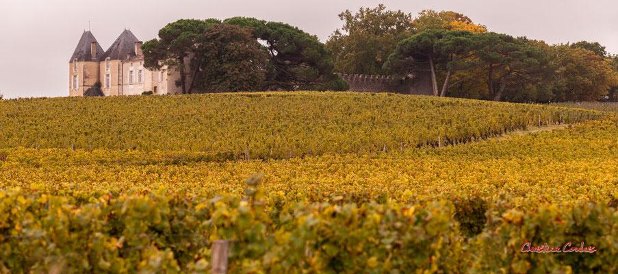 Vignoble du Sauternais, Château d'Yquem, Sauternes. Samedi 10 octobre 2020. Photographie © Christian Coulais