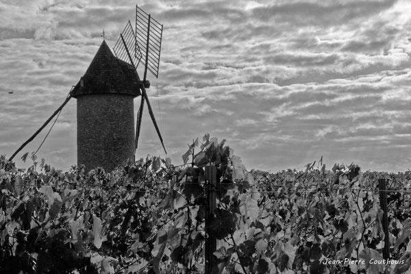 Moulin à vent de Cussol, Saint-Maixant. 28/09/2019. Photographie © Jean-Pierre Couthouis