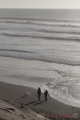 """""""Attrape, le chien"""". Biscarrosse océan, plage du Vivier, Landes. 21 février 2016"""
