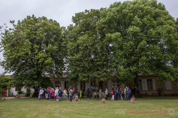 Dégustation sous les tilleuls du Château Brethous. Randonnée pédestre Jazz360 2016, de Cénac à Quinsac, 12/06/2016