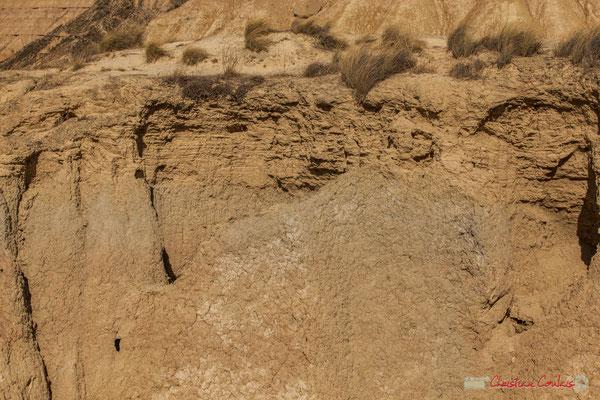 Bras à sec d'amont en aval, glissement de terrain, Barranco de las Limas, Parque natural de las Bardenas Reales, Navarra