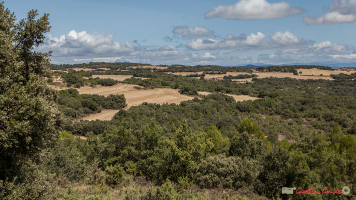 Panorama entre Murillo el Fruto et Ujué, route de la crête / Panorama de Murillo el Fruto y Ujué, el camino de montaña (objectif 52mm)