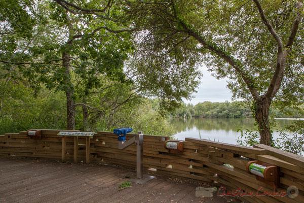 Site pédagogique, d'observation.  Lagune de Contaut, Espace Naturel Sensible de Gironde, Hourtin