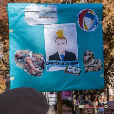 """""""Emmanuel Macron champion de la terre"""" (paquebot, orang-outan, Roundup, poussins, Total) Manifestation nationale des gilets jaunes. Cours d'Albret, Bordeaux. Samedi 17 novembre 2018"""
