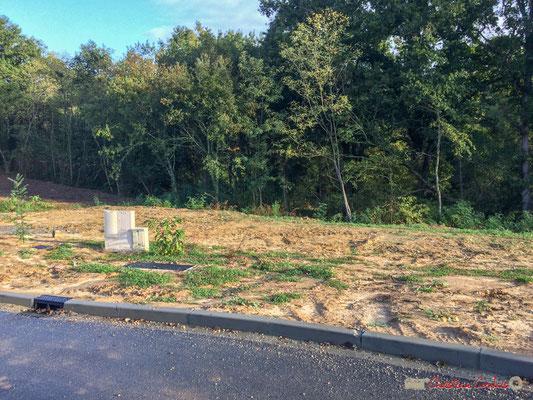 4 Le clos du Petit Maître, avenue du bois du moulin, Cénac, Gironde. 16/10/2017