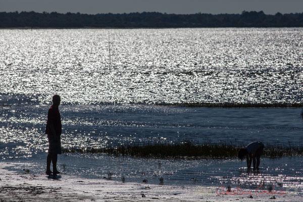 Père et fille, les pieds dans l'eau du Bassin d'Arcachon. Domaine de Graveyron, Audenge, espace naturel sensible de Gironde