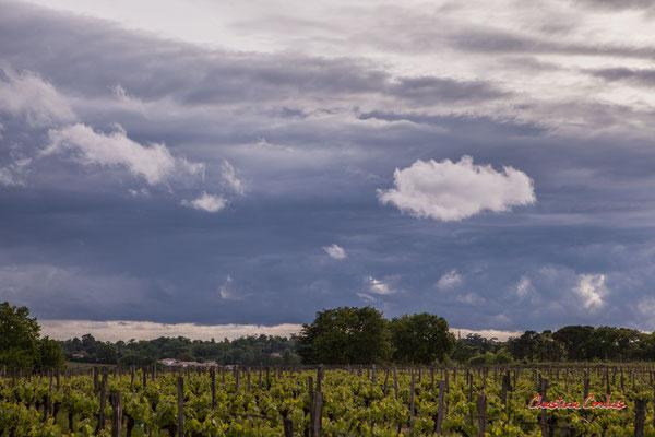 Ciels et nuages, dimanche 19 avril 2020, 19h01, le Garde, Cénac. Photographie : Christian Coulais / 70mm
