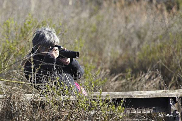 Odile Roux en action. Réserve ornithologique du Teich, samedi 16 mars 2019