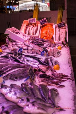 """""""Etal de poissons 2"""" Marché des Capucins, Bordeaux. Samedi 6 mars 2021. Photographie © Christian Coulais"""
